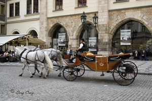 Prague Buggy Ride