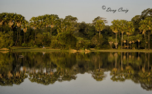 Reflections At Angkor Thom