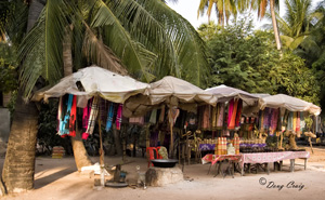 Roadside Vendors - Photo #9